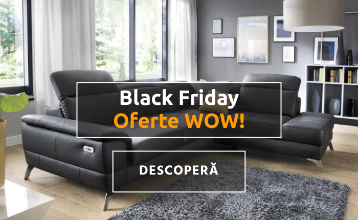 Black Friday Mobila